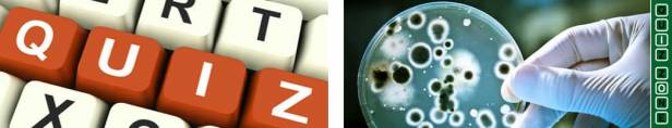 science and technology quizzes