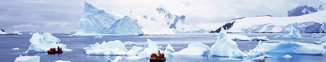 arctic vs antarctic