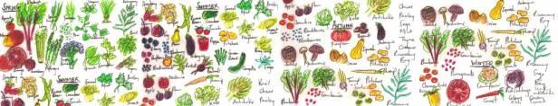 vegetable family names