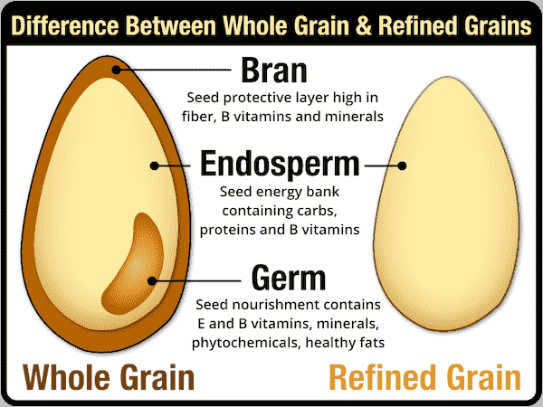 differences between whole grain and refined grain explained